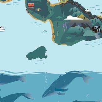 WP-Island-Maps